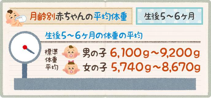 赤ちゃんの平均体重生後5ヶ月~6ヶ月