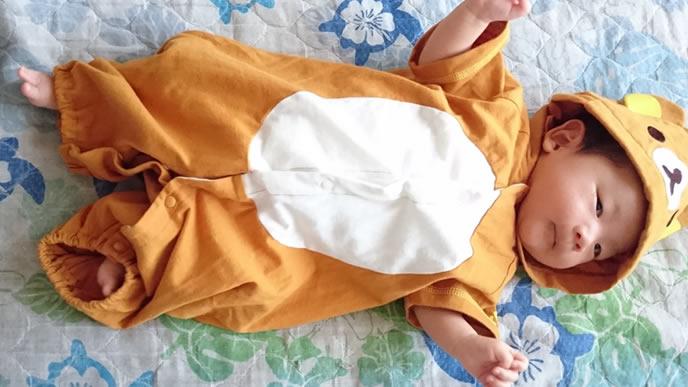 きぐるみの中で安心する赤ちゃん