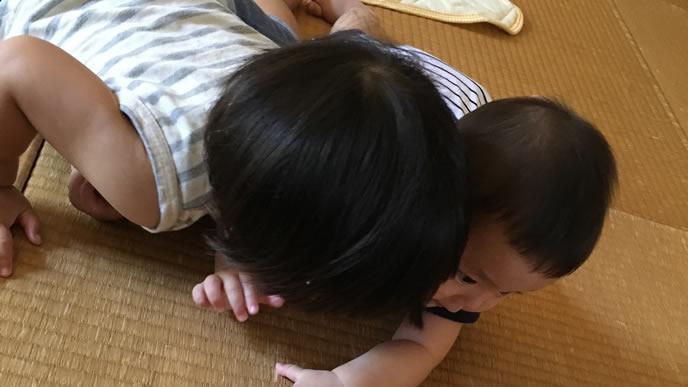 お兄ちゃんと一緒に遊ぶ赤ちゃん