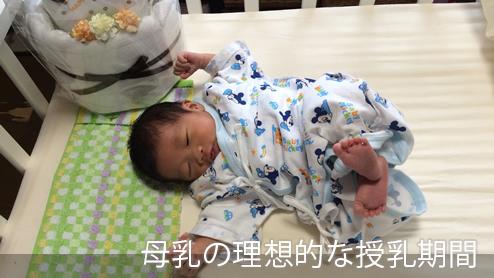 母乳はいつまであげる?理想の授乳期間&現実【体験談】