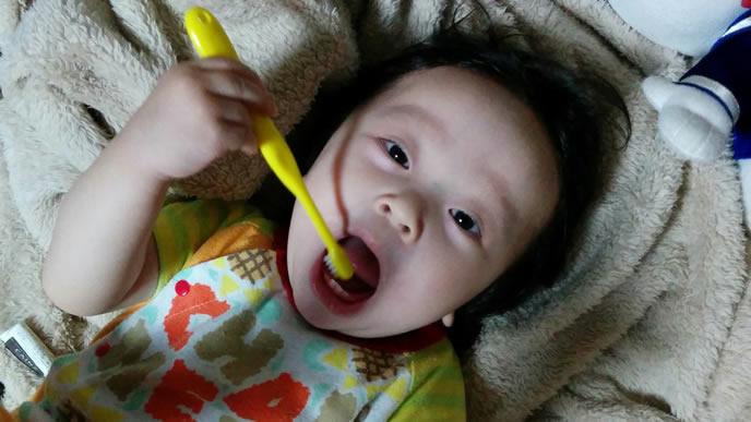 自分で歯磨きができる赤ちゃん