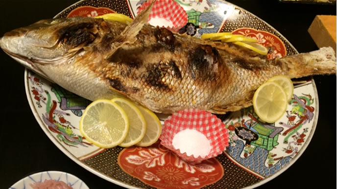 お食い初めに出される立派な鯛
