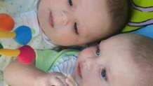 160810_twin-pregnancy2