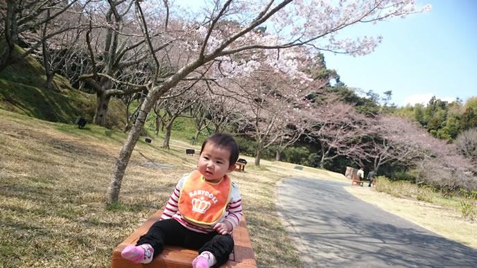 桜の下でお花見を楽しむ赤ちゃん