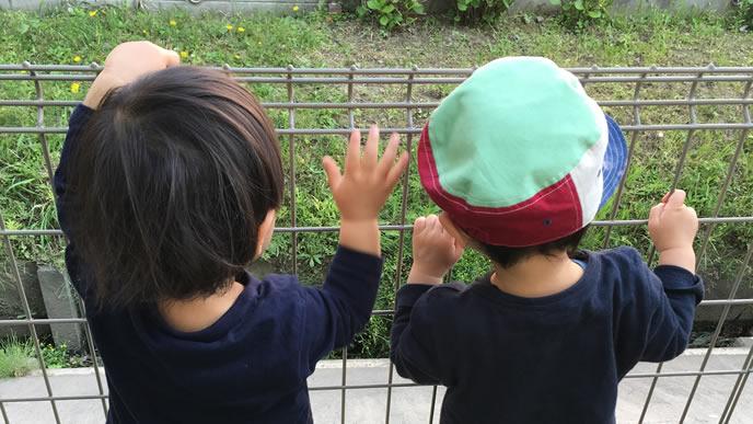 保育園のお友達と一緒に外を眺める男の子