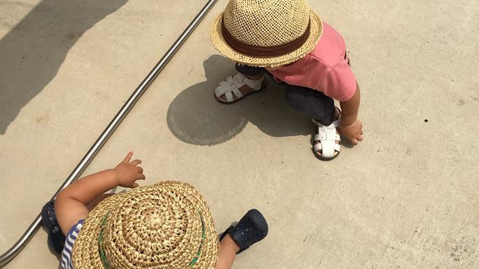 外で砂遊びをする兄弟