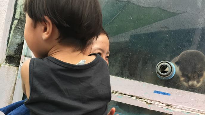 ママの抱っこが大好きな男の子