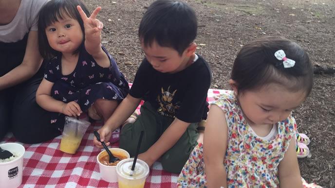 近所の公園へピクニックに行く家族
