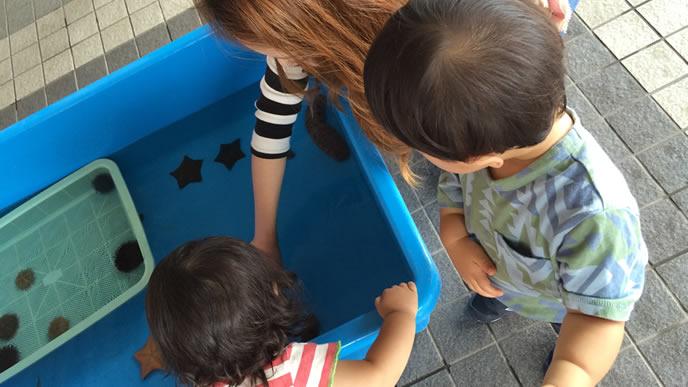 体験コーナーのある水族館で遊ぶ親子