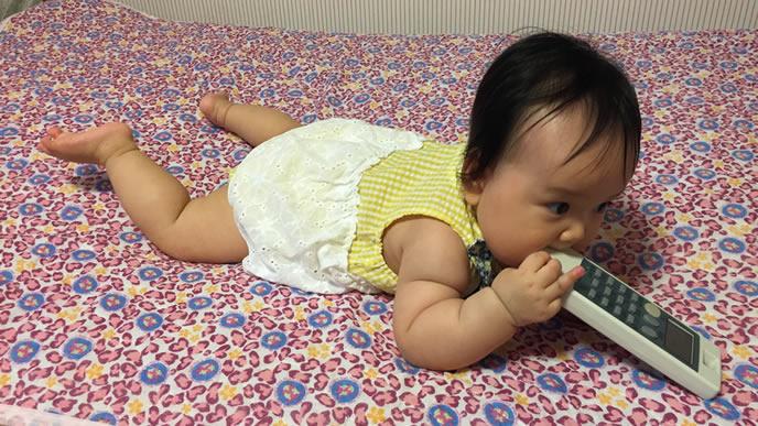 テレビのリモコンをがじがじかじる赤ちゃん