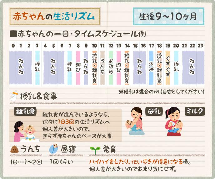 生後9~10ヶ月のタイムスケジュール