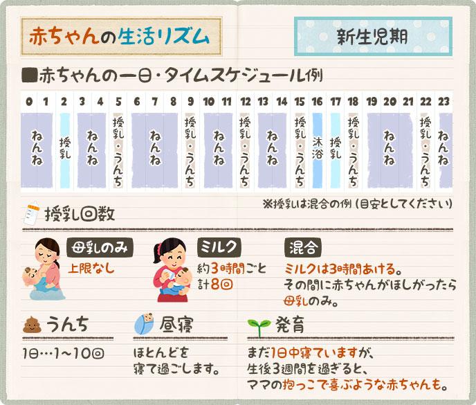 新生児期のタイムスケジュール