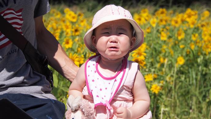 おでかけ中に人見知りで泣きじゃくる赤ちゃん