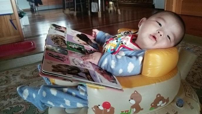イスにすわり絵本を自分で見る生後6ヶ月の赤ちゃん