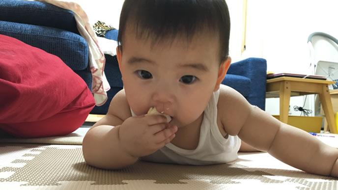 うつぶせで餅を食べる赤ちゃん