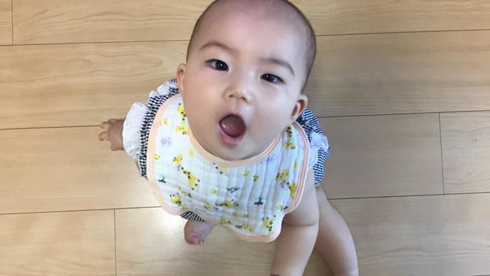 ママにおねだりをする赤ちゃん