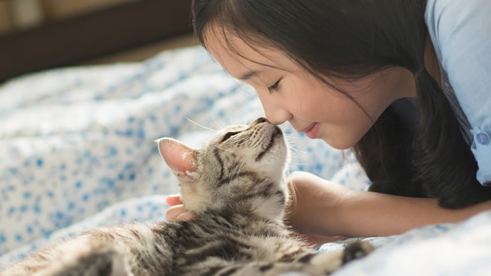 大好きな猫とキスをする飼い主の女性