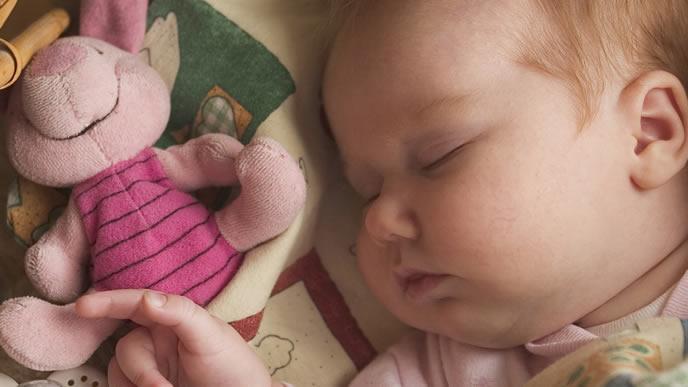 お気に入りのぬいぐるみと一緒に寝る赤ちゃん
