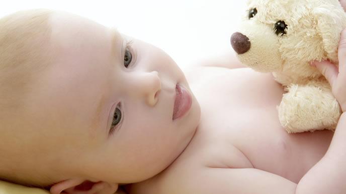ぬいぐるみに興味がある赤ちゃん