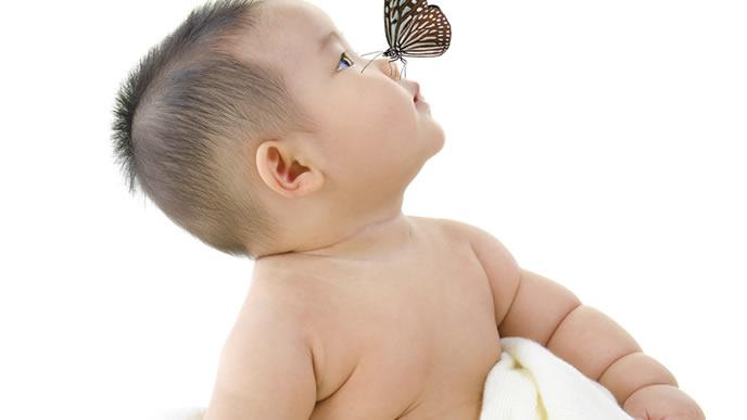 母乳よりも蝶々に興味がある赤ちゃん
