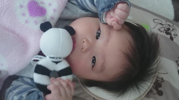 お気に入りのおもちゃと一緒に寝る赤ちゃん