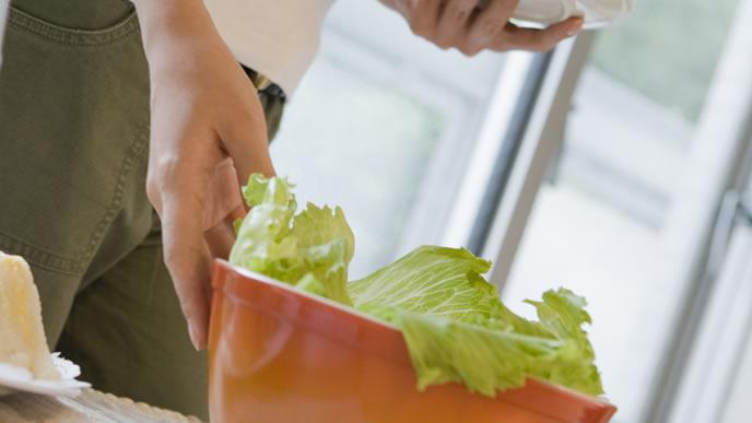 野菜中心の生活に切り替えるママ