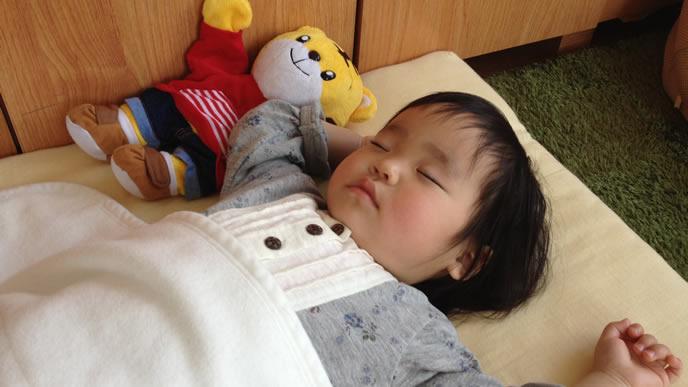 仲良しのしまじろうと一緒に寝る赤ちゃん