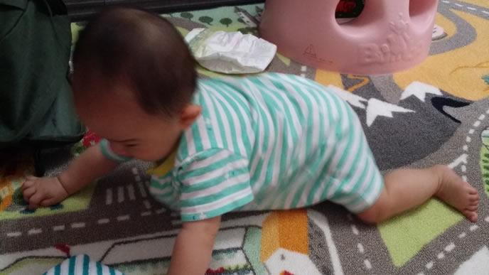ママ手作り肌着でハイハイする赤ちゃん