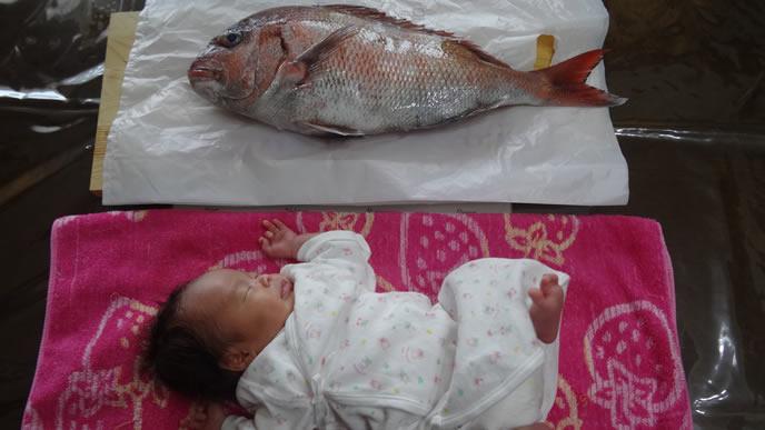 お七夜のお祝いに使う鯛と赤ちゃんのツーショット