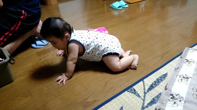 クーイングを発しながらハイハイで移動する赤ちゃん