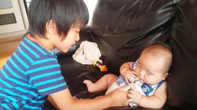 兄にアレルギーの心配のない離乳食を食べさせてもらう赤ちゃん