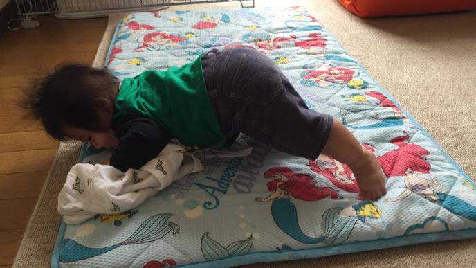 ハイハイで起き上がろうとする赤ちゃん