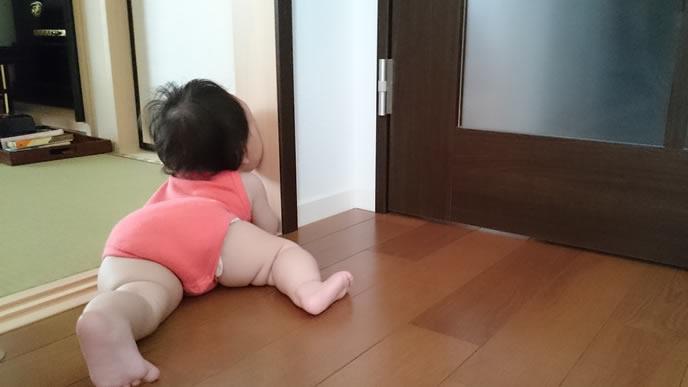 部屋にいるのが嫌なためハイハイで逃げる赤ちゃん