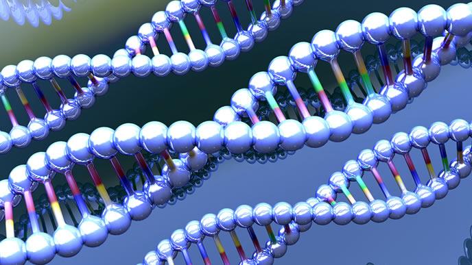 ダウン症を表す染色体の画像