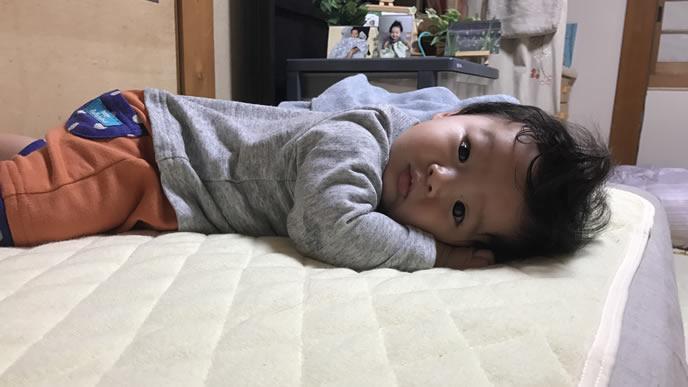 ママを見つけて目を覚ました赤ちゃん