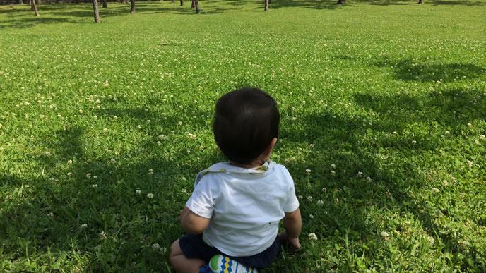 公園の芝生をジッと見つめる赤ちゃん
