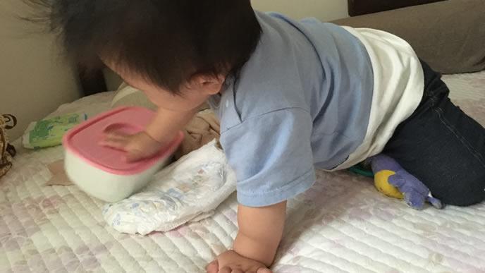 ハイハイで突き進む赤ちゃん