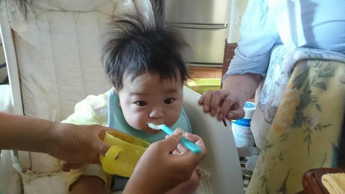 前のめりで離乳食を食べる赤ちゃん