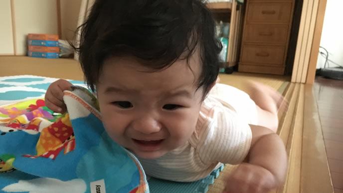 うつ伏せでギャン泣き中のくせっ毛の赤ちゃん