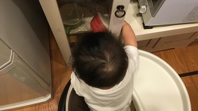 台所でいたずらをする赤ちゃん
