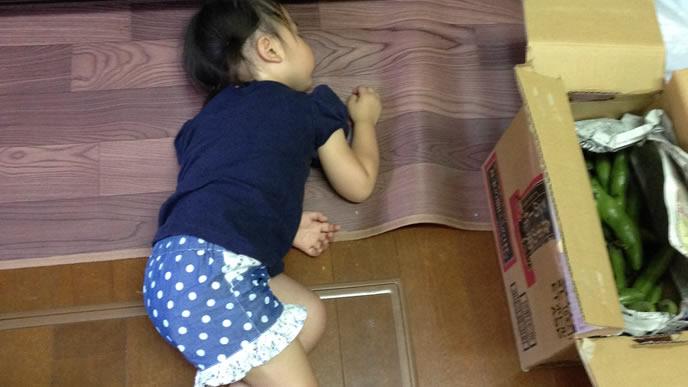 疲れてキッチンの床で寝入ってしまう赤ちゃん