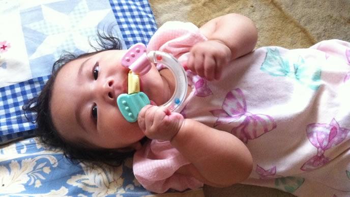 歯がためを一生懸命かじる赤ちゃん
