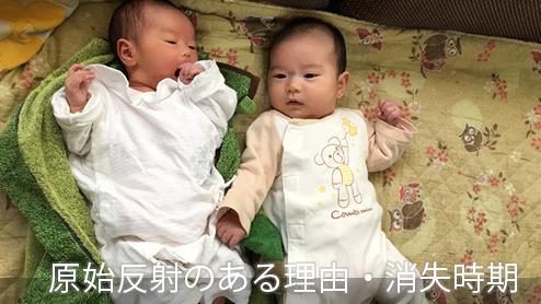 原始反射の種類は?赤ちゃんに原始反射がある理由や消失時期