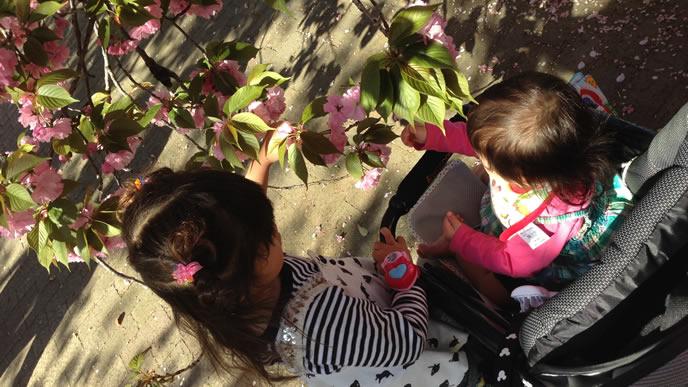 天気の良い日に公園で遊ぶ姉妹