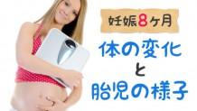 161126_8months_pregnancy2