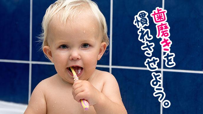 歯磨きを始めよう