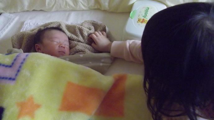 新生児期の弟を見守る姉