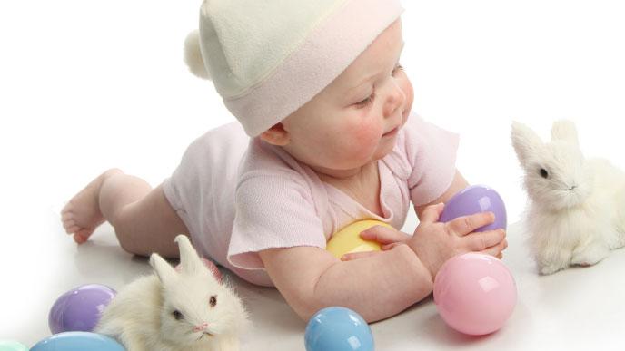 おもちゃで遊ぶ