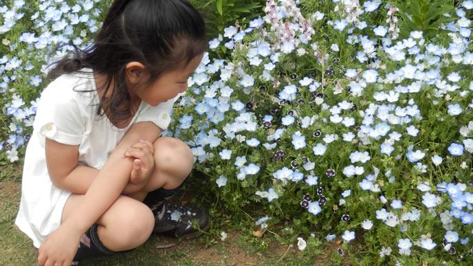 花が大好きな女の子