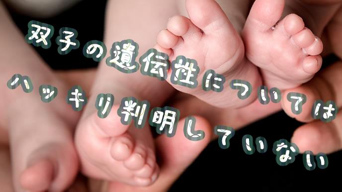 新生児の双子の足